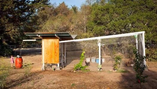 Vida ecoverde el gallinero en california estados unidos for Gallinero jardin