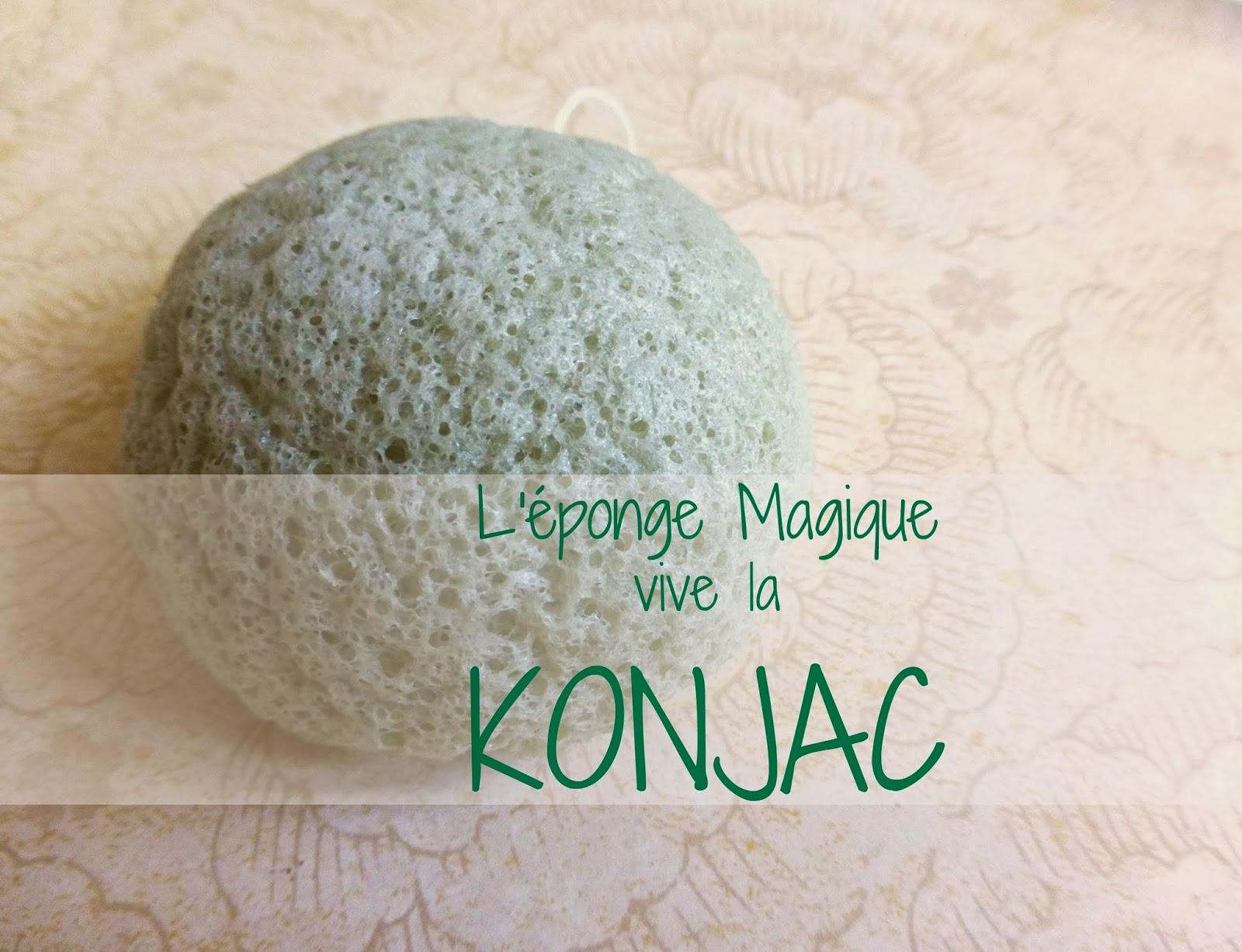 L'éponge Magique, Vive la KONJAC!