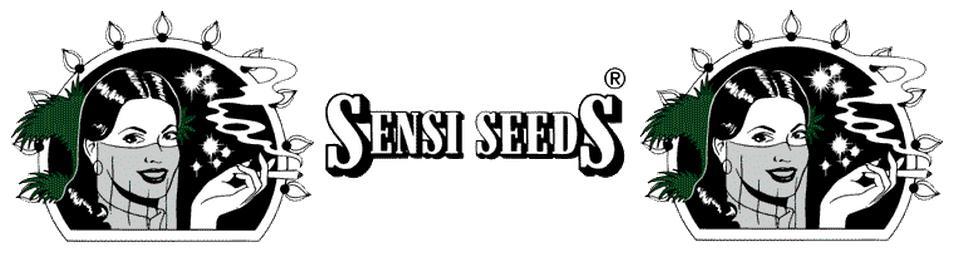 Sensi Cannabis Seeds