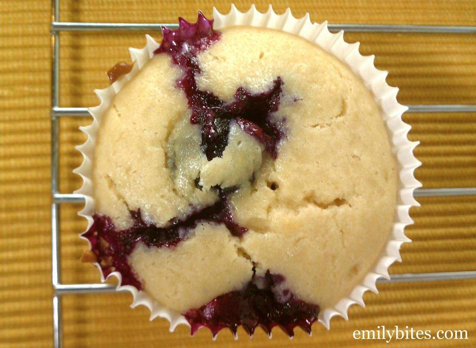 Lemon Blueberry Muffins - Emily Bites