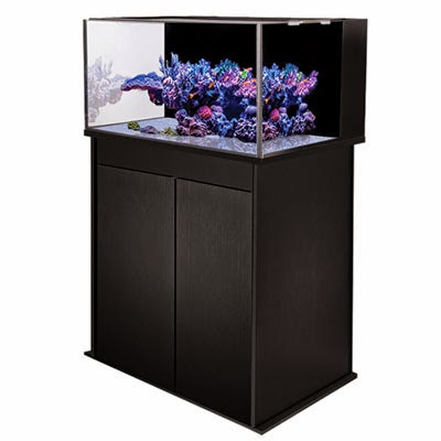 http://www.readysetreef.com/reef-aquarium-nano-refugium/reef-aquarium-nano/innovative-marine-nuvo-aquariums/innovative-marine-sr-60-nuvo-aquarium