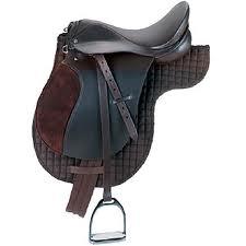 Caballos tipos de monturas for Monturas para caballos