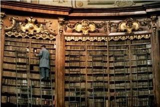 bibliotecario, libros, perdidos, buscar, encontrar, biblioteca