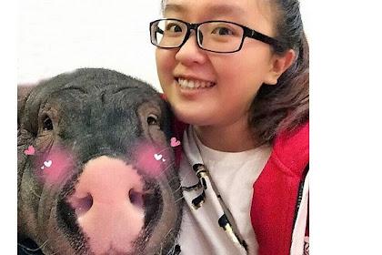 Wanita Ini Rela Berbagi Ranjang dengan Babi