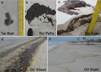 BP, Florida Oil Spill Claims, Pinellas Oil Spill Claims, BP Oil Spill Claims in Florida