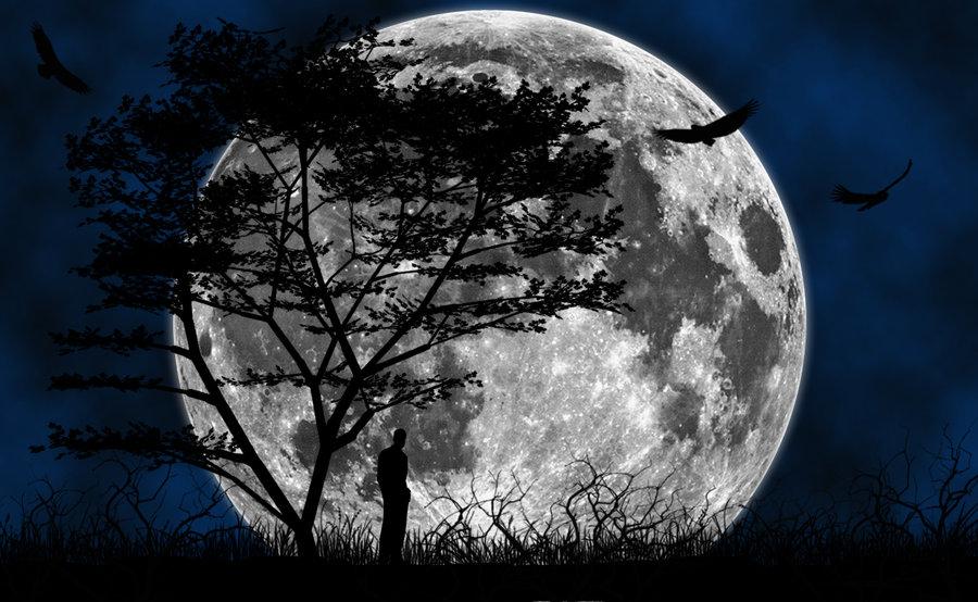 Wonderful Wallpapers Moon HD
