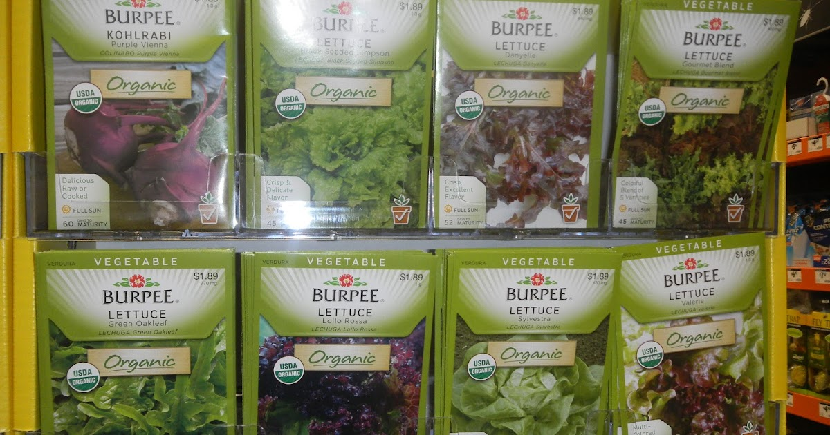 Green Roof Growers Starting Seeds Home Depot Offers Organic Martha Burpee Seeds