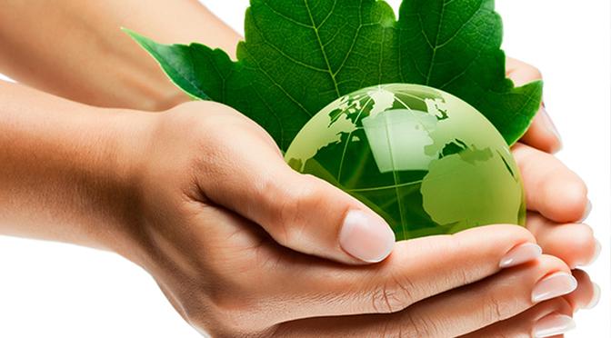 escenario natural desarrollo sustentable pdf