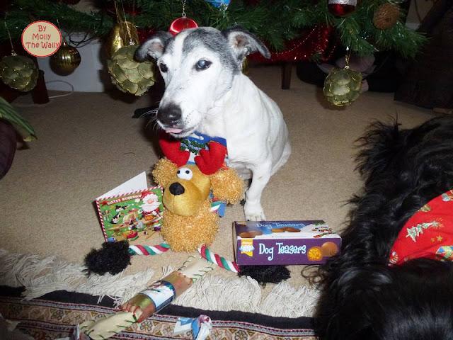 Molly The Wally & More Xmas Presents 5 !
