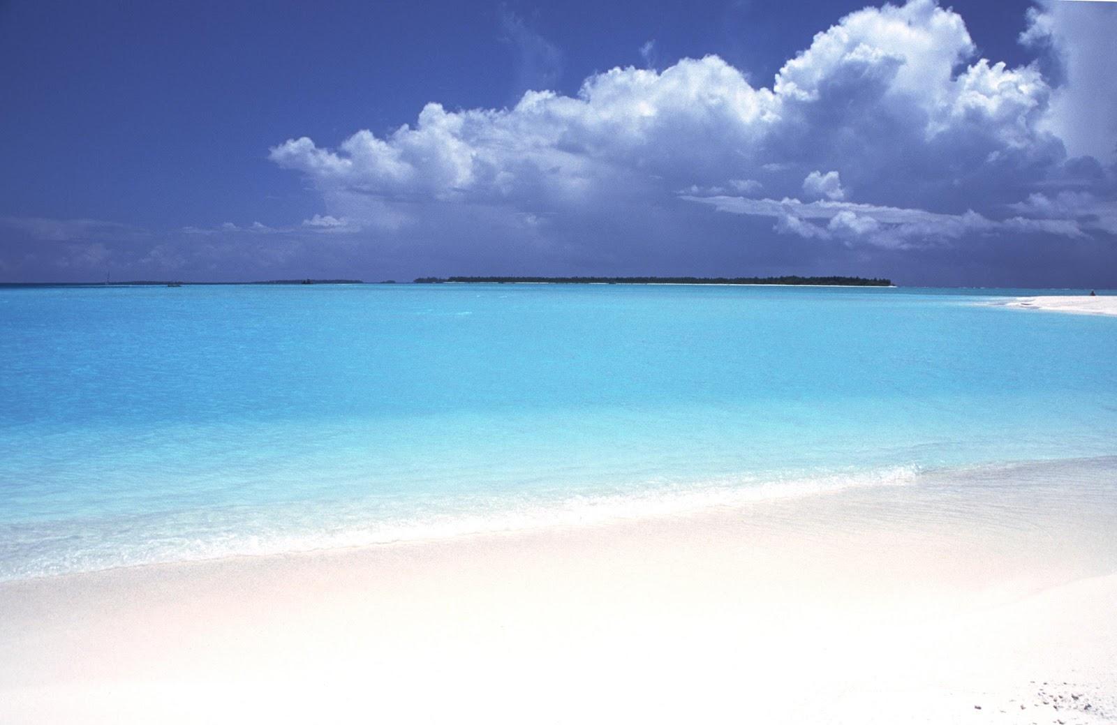 Paradise Island Park And Beach Resort Menu
