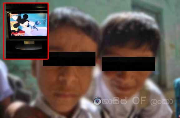 Brothers stole Television in Haguranketha area
