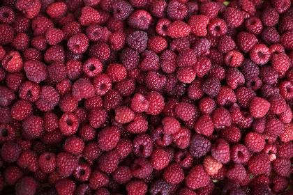 Eating raspberries can enhance fertility