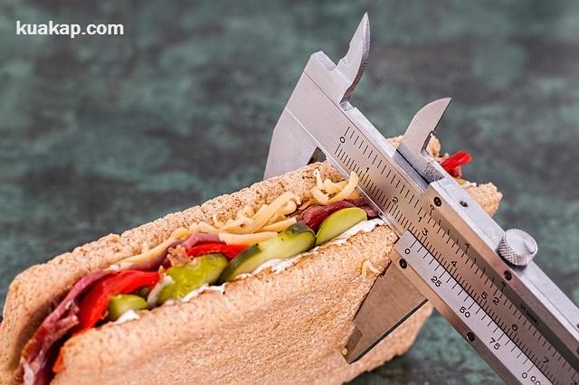 inilah Jenis Dan Proses Bagaimana Pembakaran Kalori dalam Tubuh Manusia
