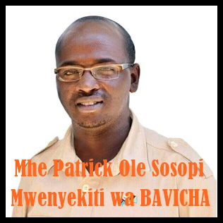 Mwenyekiti wa BAVICHA Taifa