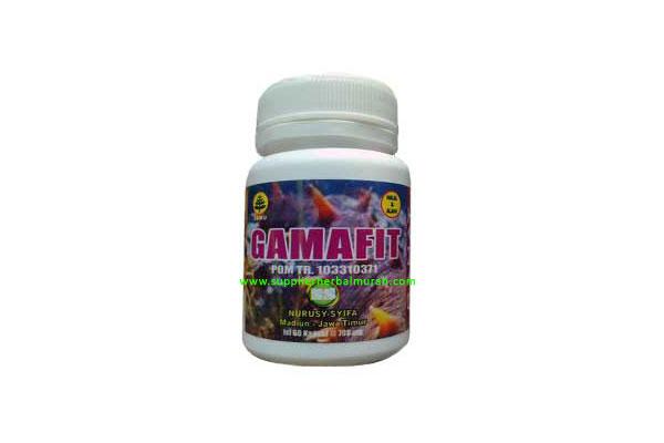 GROSIR Gamafit 5 Botol @ 60 Kapsul (Gamat 100%)