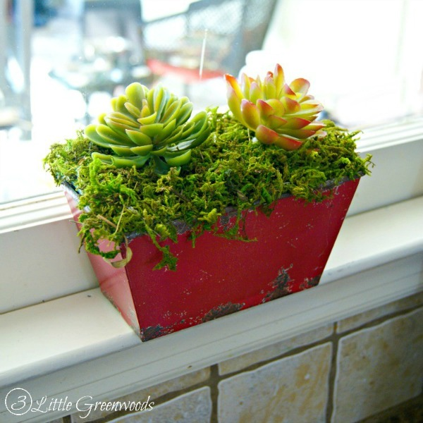 An awesome tutorial for planting faux succulents by 3 Little Greenwoods for DIY beautify