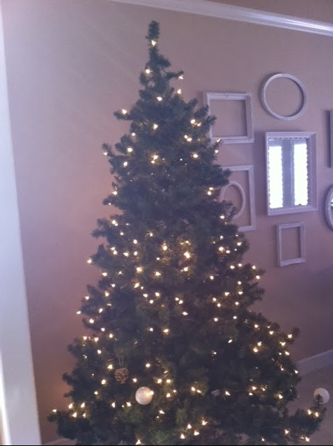 Carol 39 s heirloom collection tale of the christmas trees for How did the christmas tree tradition start