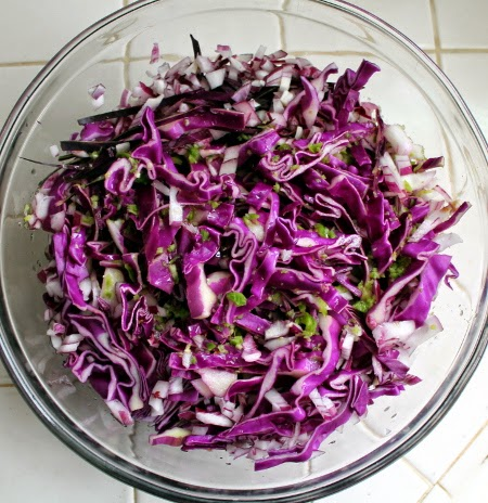 Red cabbage curtido de repollo
