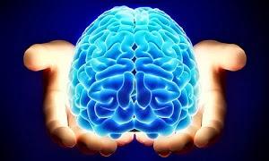 Neurociências e Reabilitação