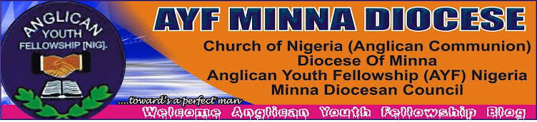 AYF BLOG MINNA DIOCESE