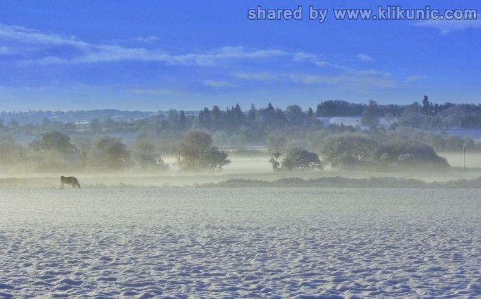 http://1.bp.blogspot.com/-FfODQ36xB5E/TX1jieScqrI/AAAAAAAARG4/0PBXvwPAbFE/s1600/winter_51.jpg