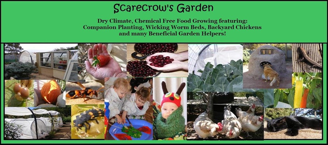 Scarecrow&#39;s Garden