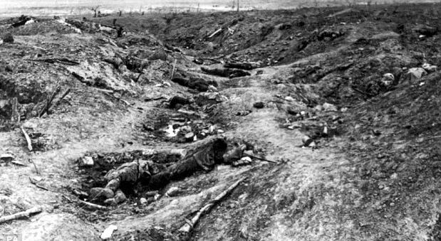 the british took the opportunity at the battle of somme The goal of the somme was to give the british the opportunity to employ its huge land army in a joint offensive assault against the battle of the somme.