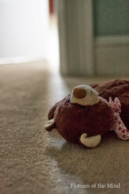 Stuffed Bear - Flotsam of the Mind