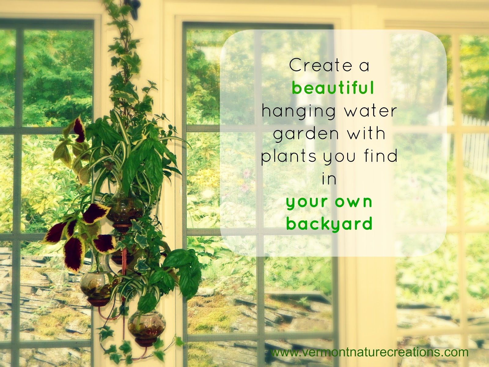 How Easy It Is To Create A Hanging Water Garden