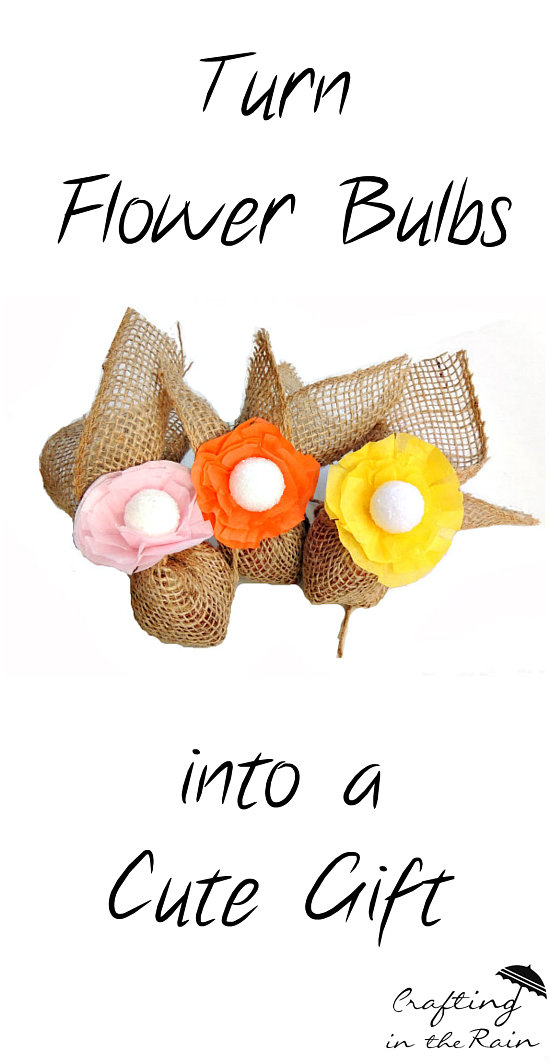 Flower Bulb Gift Baskets : Flower bulb gift and giveaway crafting in the rain