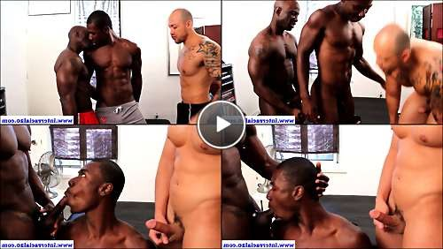 gays sex pix video
