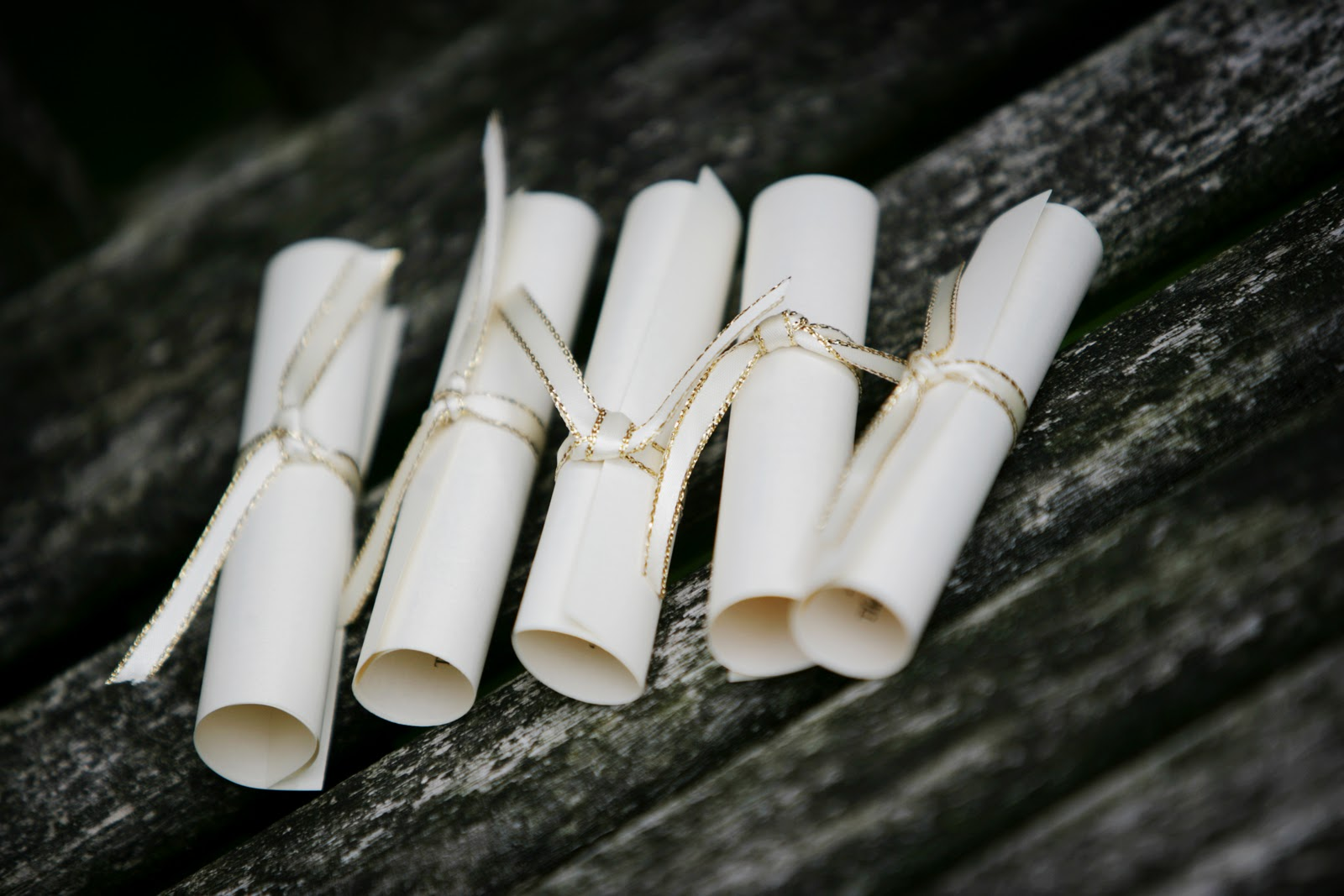 Simply Bows & Chair Covers: Simply Medieval... Simply Style