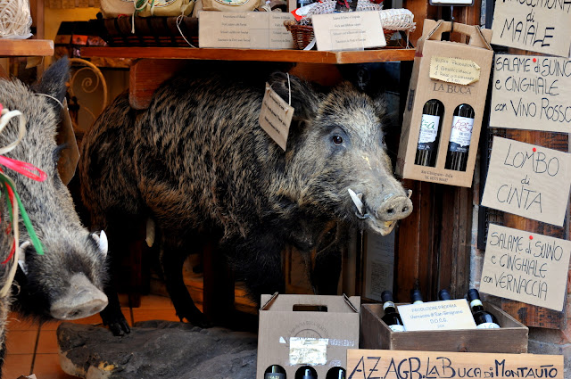 Wild Boar in San Gimignano, Italy | Taste As You Go