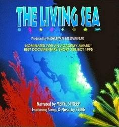 Sự Sống Của Biển Cả - The Living Sea