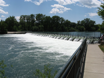 Redding:  The A.C.I.D. Dam
