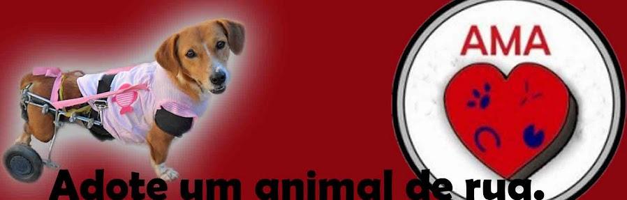 AMA - Associação Amiga dos Animais