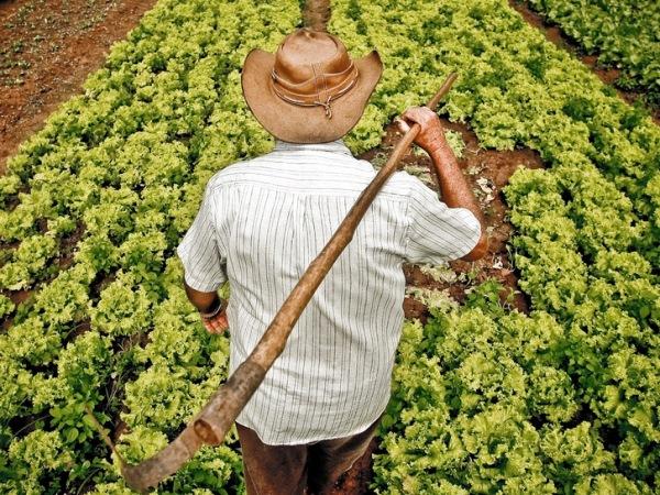 Semana do Agricultor em Campina Grande