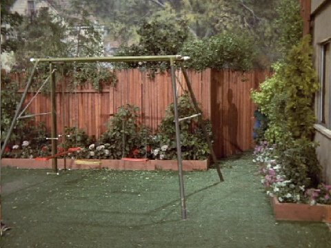 The brady bunch backyard