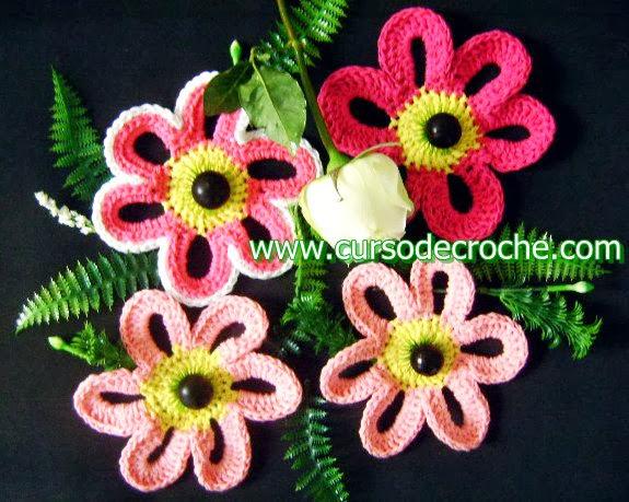 coleção 5 volumes dvd flores de croche com Edinir-Croche blog loja frete gratis