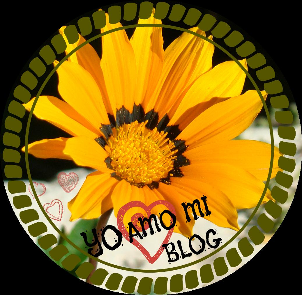 Amo mi Blog