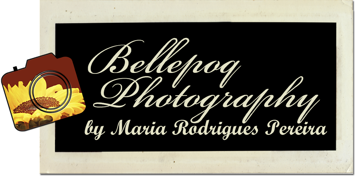 Bellepoq Photography