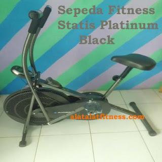 Sepeda Fitness Statis Platinum Silver