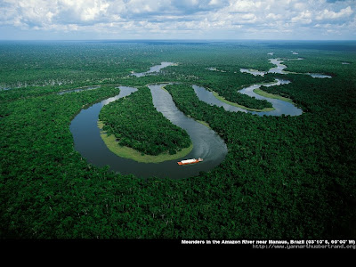 Meanders in Amazon River