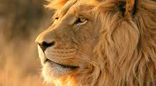 Signo do mês:Leão
