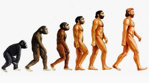10 tentativas de explicar a vida sem a evolução de Darwin