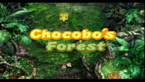 Final Fantasy IX, Chocobo's Forest