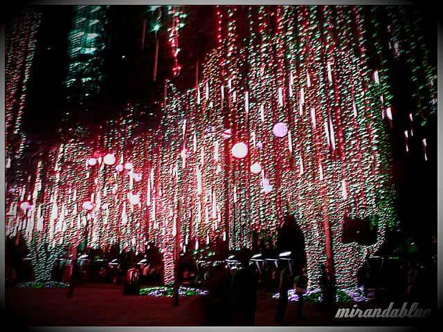 of dancing lights accompanied by christmas songs the tree branches were decked with led lights in jewel colors and has a meteor shower effect