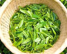 weight loss green tea Benefit