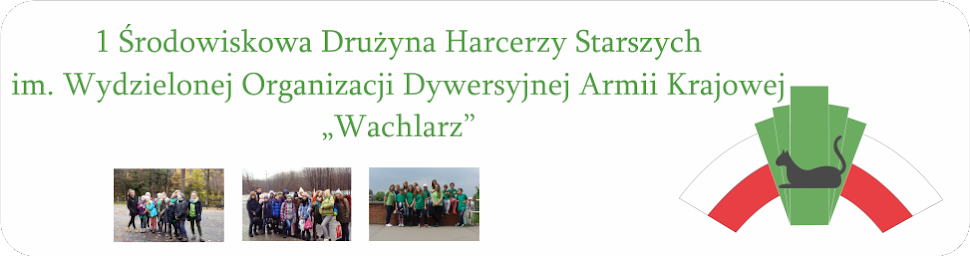 """ZHP 1ŚDHS """"Wachlarz"""""""
