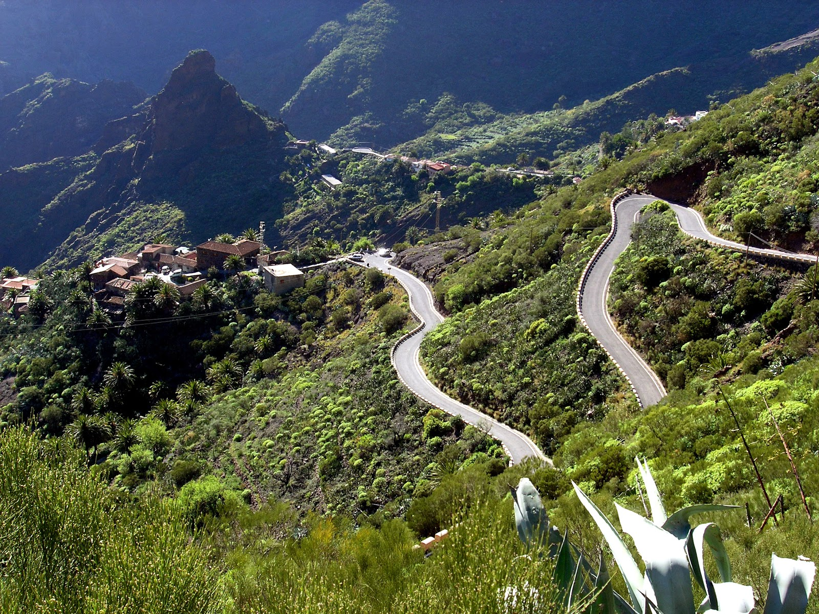 5 Ways to Spend Your Days in Tenerife  Tourist Destinations